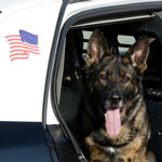 U.S. Supreme Court Rules Prolonging Traffic Stop to Conduct Dog Sniff is Unconstitutional