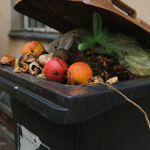SB 1383 Regulations on Organic Waste are Finalized